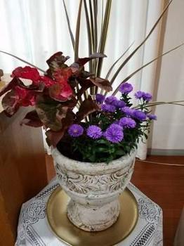 FB_IMG_1504422858841 - コピー.jpg